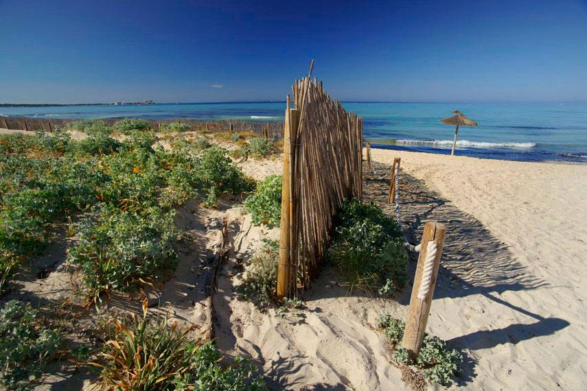 La Platja Des Trenc és Un Espai Litoral Gairebé Ve Mallorca Un Refugi On La Calma Perdura