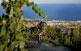 El turó d'en Galceran, a Alella.