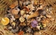 Els boscos del Solsonès produeixen cada any més de 654 tones de bolets comestibles, amb una producció mitjana per hectàrea de 29 kg, segons un estudi del 2005.