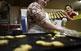 Al forn La Lionesa farceixen les galetes amb nous.