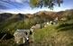 La ruta del Camin Reiau condueix al poble de Canejan, des d'on surt el camí tradicional que s'endinsa a la Val de Toran, un dels paratges més bells i preservats de la Vall d'Aran.