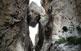 El barranc del Mascarat és un tall impressionant que secciona la serra de Bèrnia i davalla fins a 300 m de fondària.