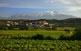 La vila de Montner, a la vall de l'Aglí, domina una gran extensió de vinyes amb el Canigó al fons.