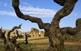 L'aqüeducte dels Arcs, a Sant Jaume dels Domenys, duia aigua a la desapareguda 'Vila Domenio'.
