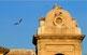 Nius a la catedral nova de Lleida.