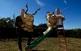 Tavi Algueró i Àngel Rigall han treballat de valent per acabar els dimonis que els ha encarregat l'Obradoria de Sant Antoni de sa Pobla, a Mallorca, que han hagut de fer amb banyes de debò de marrans i bous.