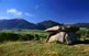 La Casa de la Vall organitza una ruta per donar a conèixer els diversos monuments megalítics de la zona, com el dolmen de la dreta.