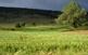 Una imatge del Racó a la primavera.