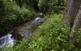 La puresa de l'aigua dels rius  han permès mantenir una gran riquesa i varietat de fauna i d'espècies vegetals que en altres indrets resulten raríssimes.