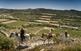 De les vinyes de la Segarra se'n fan vins de la DO Costers del Segre. El camí que va de Guimerà a l'Ametlla de Segarra.