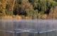 La fotja és una de les espècies autòctones de l'estany. Sovint, la gent la confon amb la polla d'aigua. Totes dues són de color negre, però la primera és una mica més grossa i duu una visera blanca sobre el bec.
