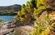 Sorgides com per art de màgia: en Gandalla i Salt del Mosso, al mar d'Avall.