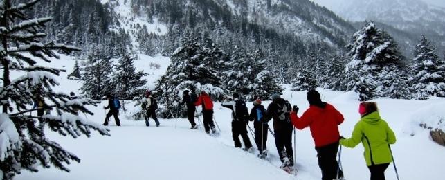 Aventura a la neu