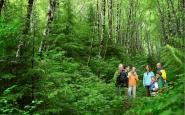 Un guia de natura condueix una família per un bosc