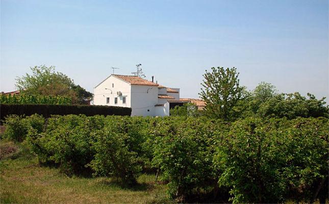 Vista dels voltants de la casa rural Cal Sinto