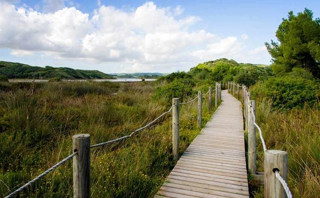 Parc Natural de s'Albufera des Grau (Menorca)