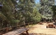 L'àrea de pícnic de les Feixes del Vilar, on comença l'itinerari pel 'silvetum' del Montseny