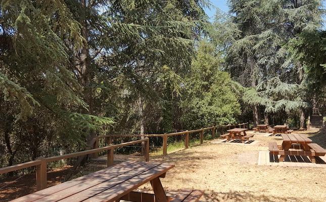 El montseny estrena un itinerari per un arbor tum d 39 arbres for Les piscines del montseny