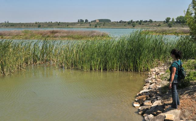Paisatge de l'estany d'Ivars i Vila-sana