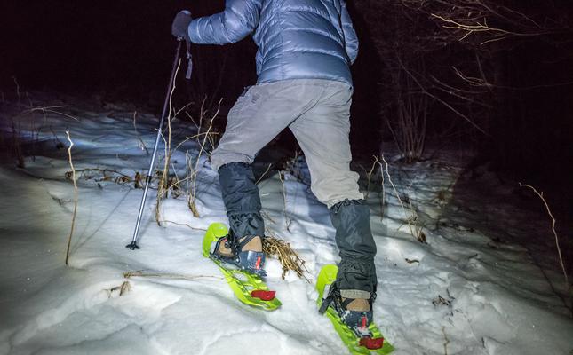 Raquetes de neu a la nit
