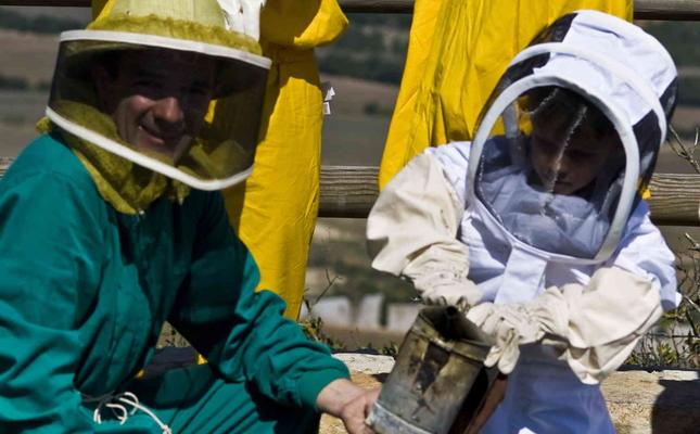 Taller 'La vida de les abelles'