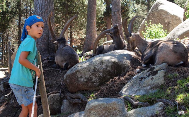 Un nen gaudint de la visita al Parc dels Angles