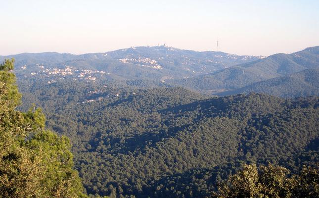 Vistes des del Puig Madrona