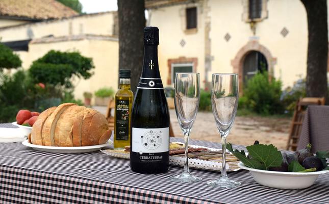 La floració de la vinya al Penedès