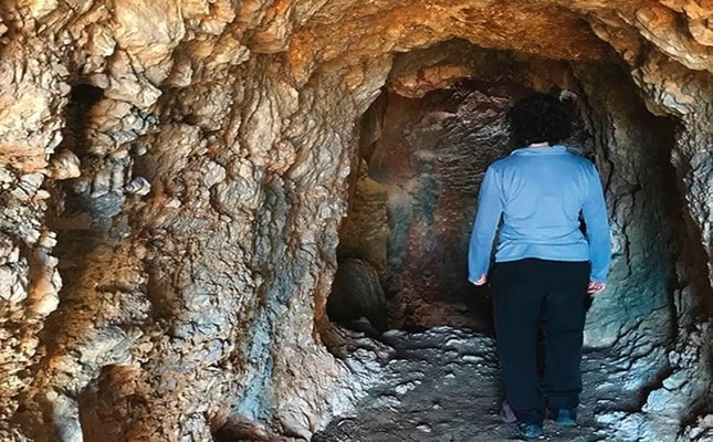 Cova Negra