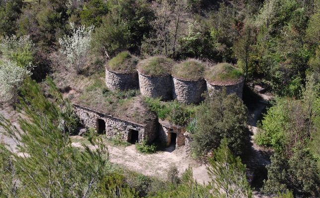 Tines del Bages