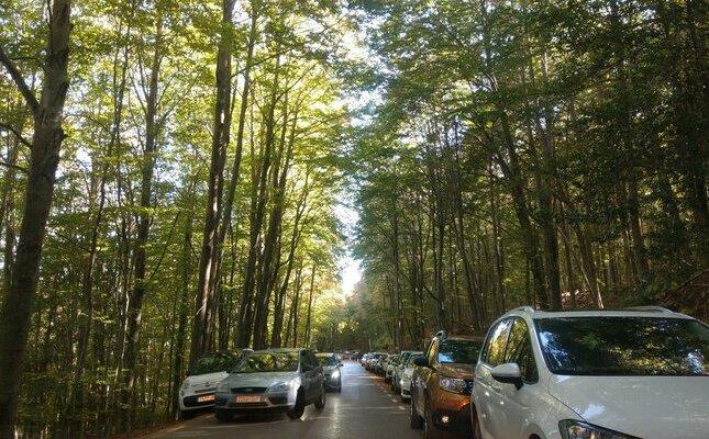 Cotxes al Montseny