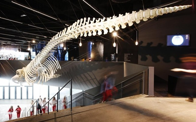L'entrada del Museu de Ciències Naturals de Catalunya