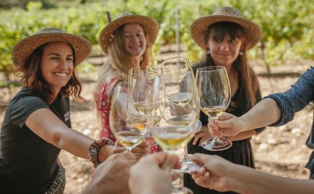 Els paradisos del vi
