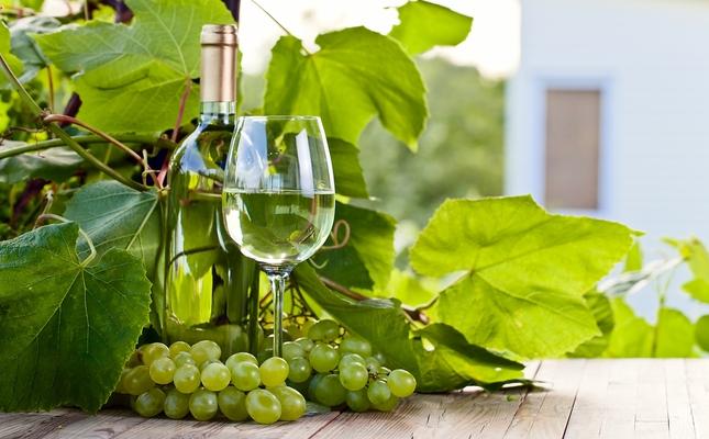 Ampolla i copa de vi blanc envoltades de pàmpols