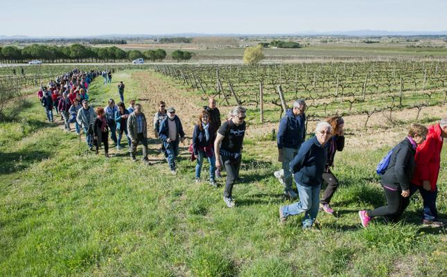 Rutes entre les vinyes al Vívid 2019