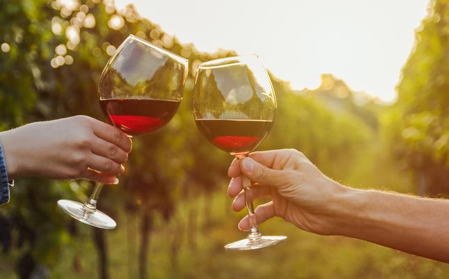 Vi i vinyes
