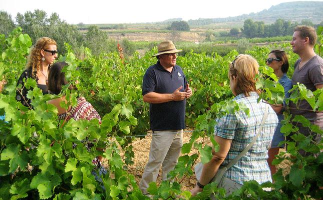 Tast de raïm entre les vinyes de Sant Pau d'Ordal