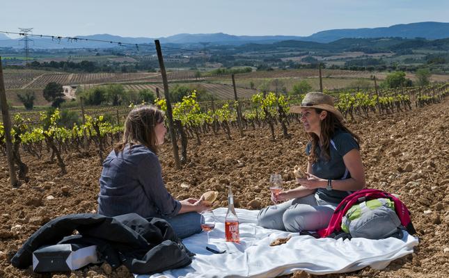Pícnic entre les vinyes