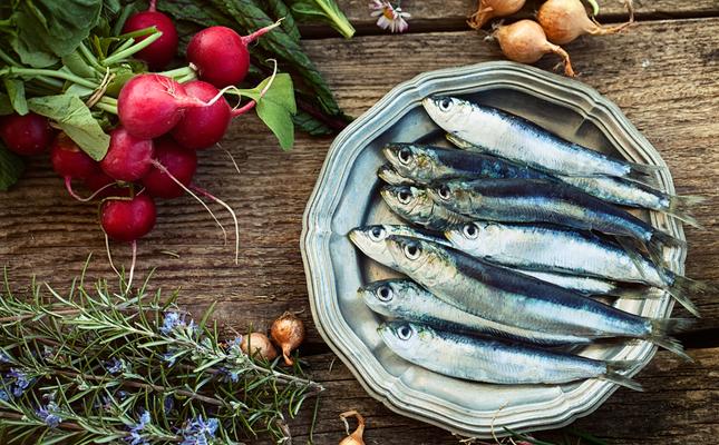 Unes jornades per redescobrir tot el sabor del peix blau.