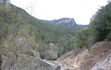 Recorrent el parc natural del Cap de Creus amb el trenet de Cadaqués