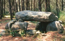Dolmen de Can Mina dels Torrents