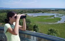 Natura salvatge als aiguamolls de l'Empordà