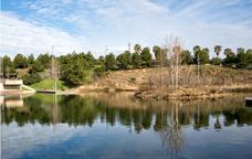 Parc de la Muntanyeta
