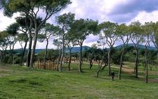 El parc del Calamot