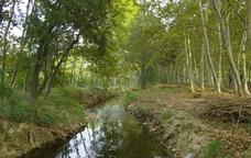Camí del Monestrell: de Sant Pere Molanta a Castellet