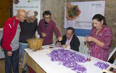 Flors de safr� s�n protagonistes de la fira Safr�nia de Montblanc