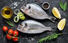 Peixos de la Mediterrània