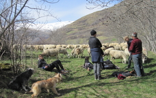 Excursió 'Aviem el bestiar'