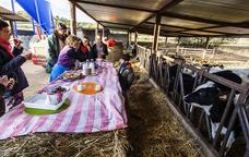 La visita a la Vaqueria d'Alt�s acaba amb un berenar a base de llet fresca i coca artesana.