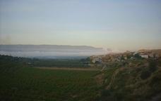 Cap a la Torre de l'Espanyol a Ribera d'Ebre